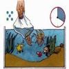 Hướng dẫn nuôi cá cảnh cực dễ cho các tân binh